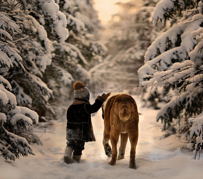 Elena Shumilova - Through the snows