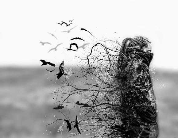 Danielle Tunstall - Birds Flying High